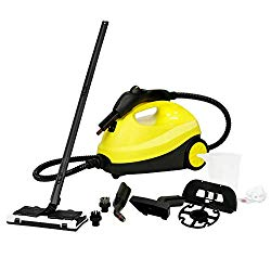 best multi purpose steam cleaner for carpet and floors